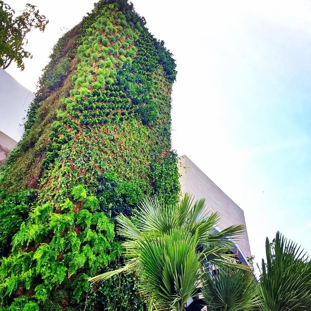 Breathe Restaurante, Gastro Bar & Garden