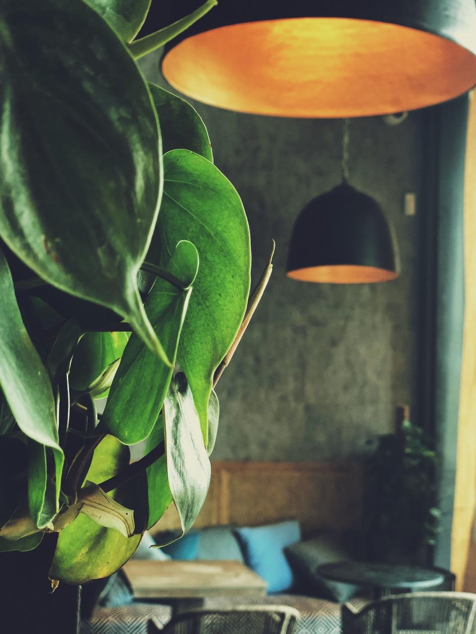 GROUND | Artisan Cafe & Bakery